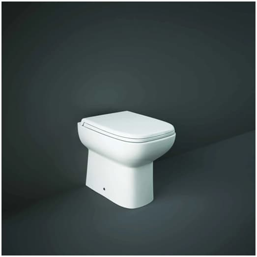 Back to wall toilet system suited to smaller bathrooms