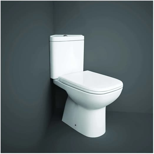 Traditional is a different type of toilet system for a new bathroom